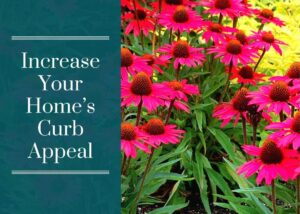 Increase Your Home's Curb Appeal
